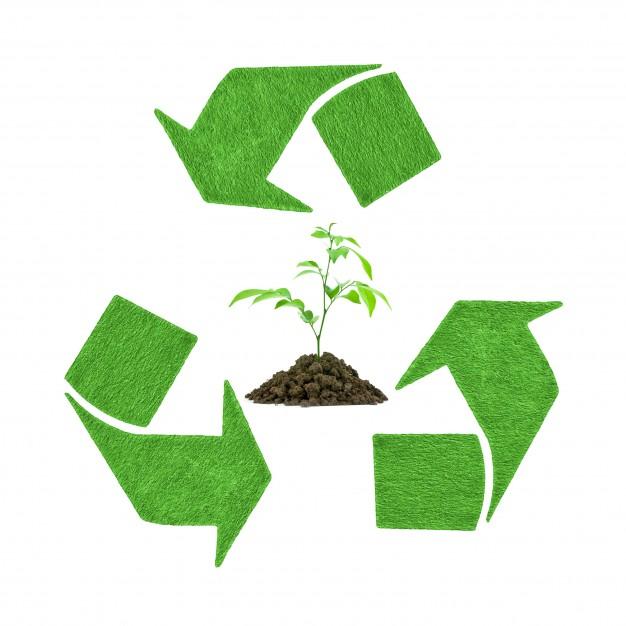 Gestione sostenibile degli eventi